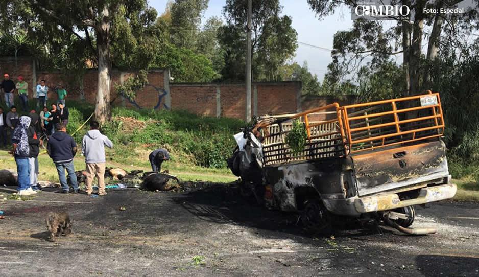 Cinco muertos deja choque de frente de dos camionetas en Atlixco