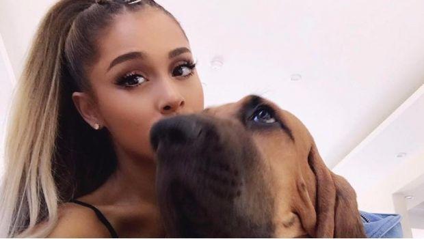 Tras atentado Ariana Grande ofrecerá concierto benéfico en Manchester