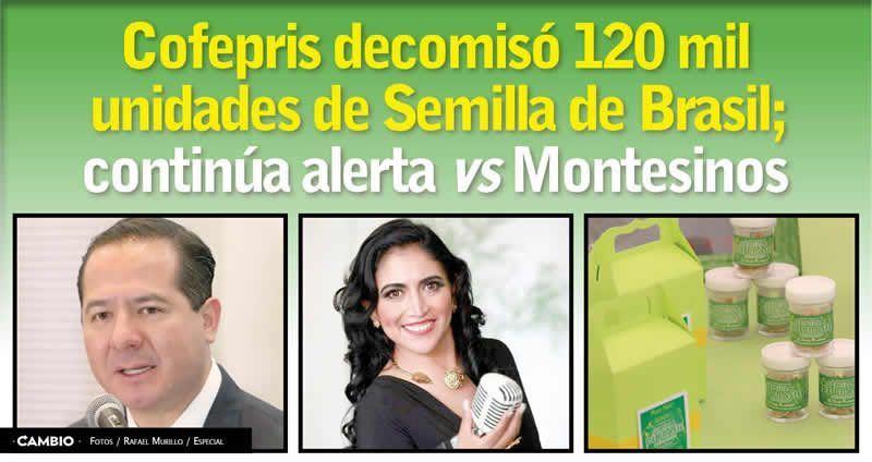 Cofepris decomis 120 mil unidades de semilla de brasil Semilla de brasil es toxica