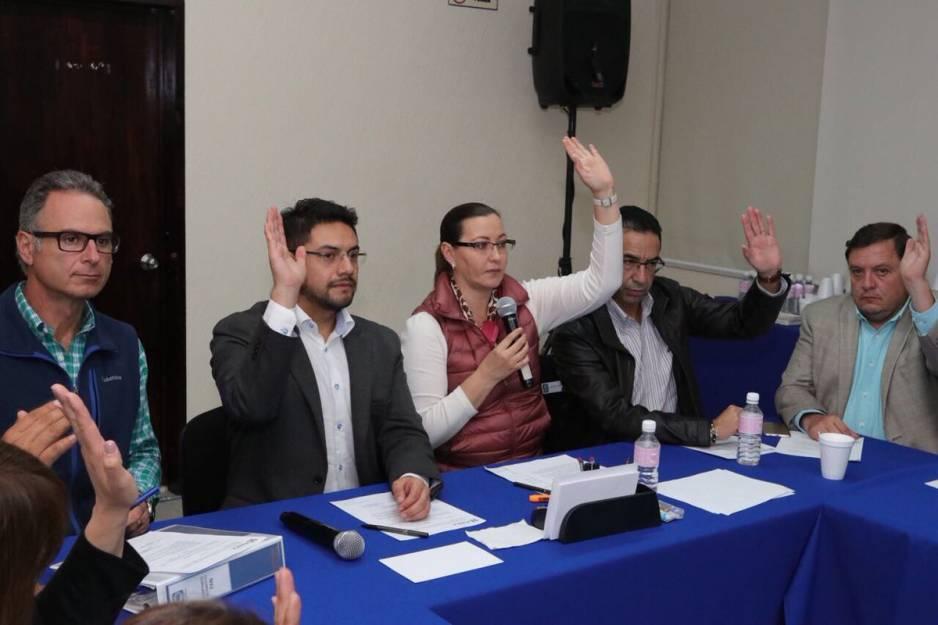 Candidaturas federales por designación, acuerda el PAN