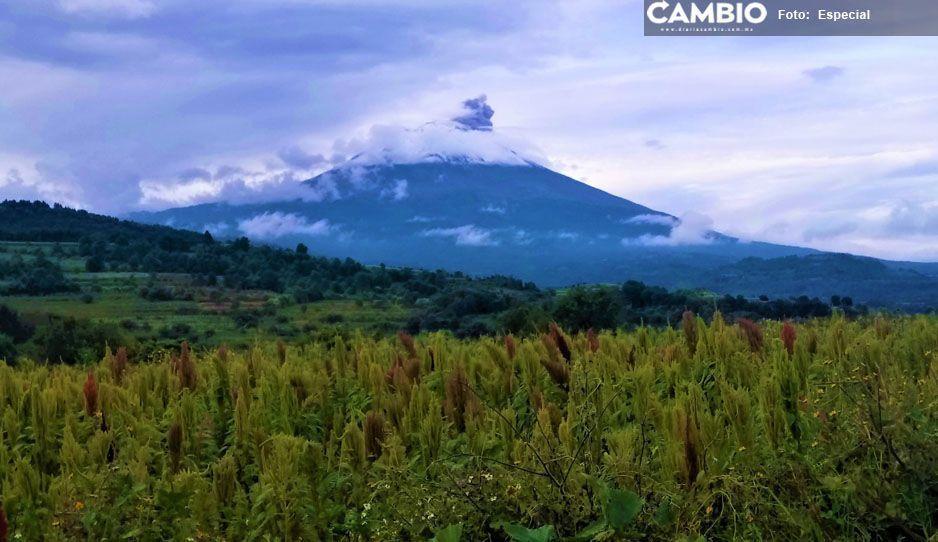 Operan incentivos de contingencia en comunidades cercanas al Popocatépetl