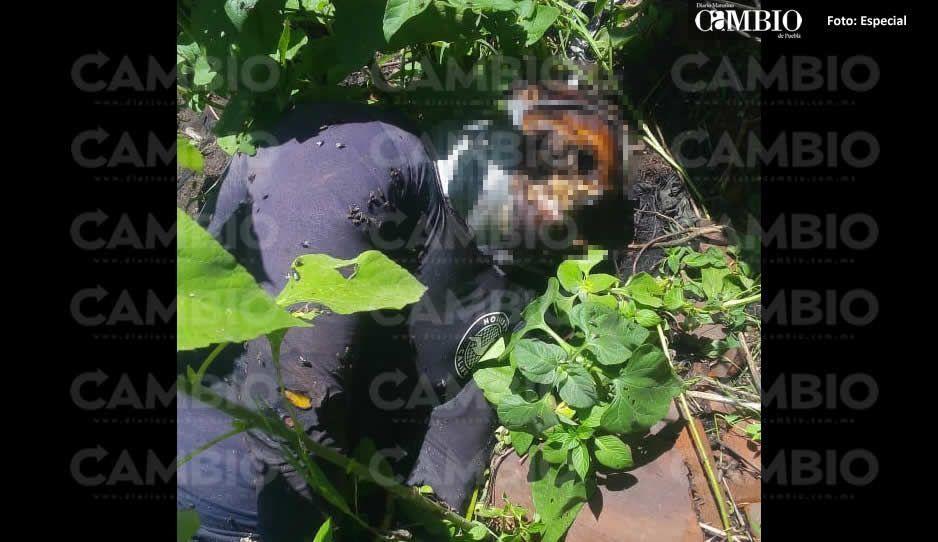 Hallan cadáver con el rostro desollado en San Gabriel Ometoxtla