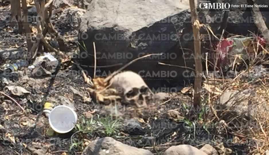 Macabro hallazgo en la Puebla-Izúcar: pepenadora encuentra cráneo de bebé