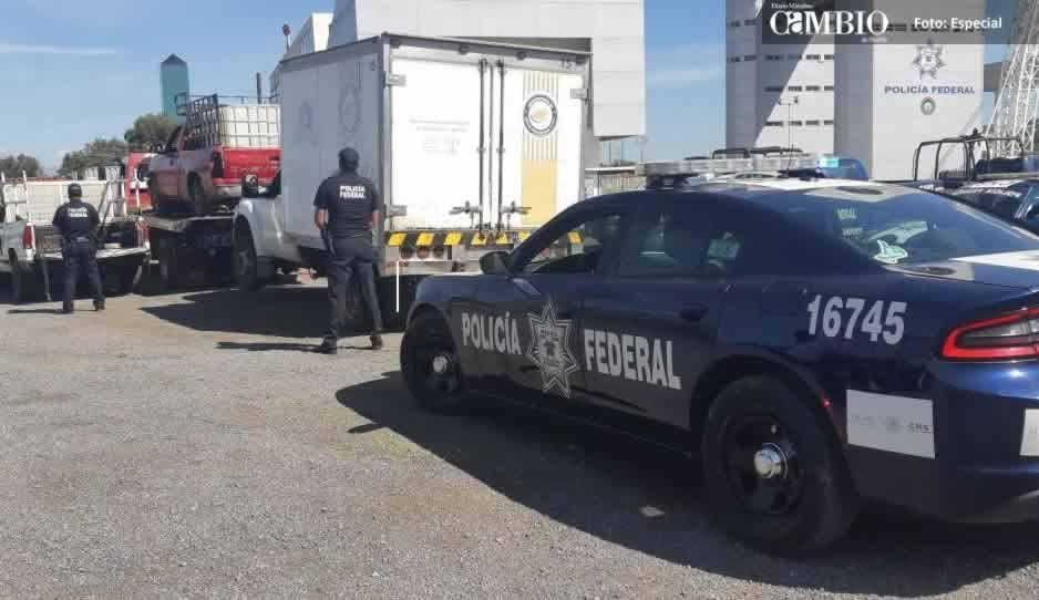PF y militares aseguran cuatro unidades robadas cerca de los ductos en Cuautlancingo