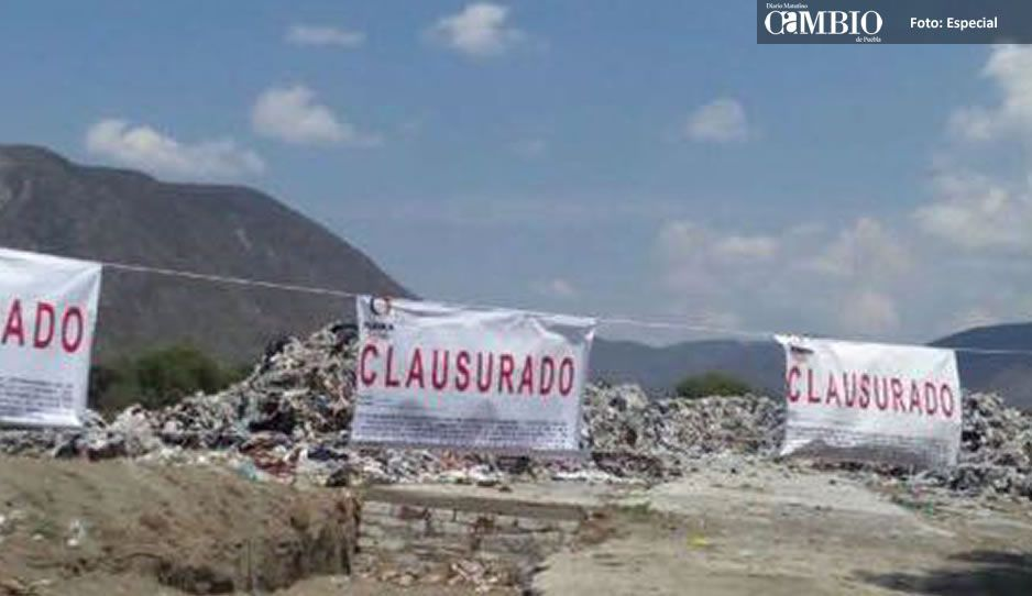 PROFEPA clausura proyecto dentro del Área Natural Protegida de Tulum