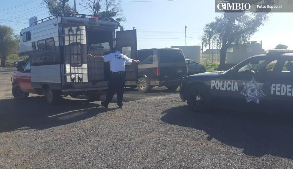 Policía Federal asegura dos unidades abandonadas con reporte de robo y huachicol