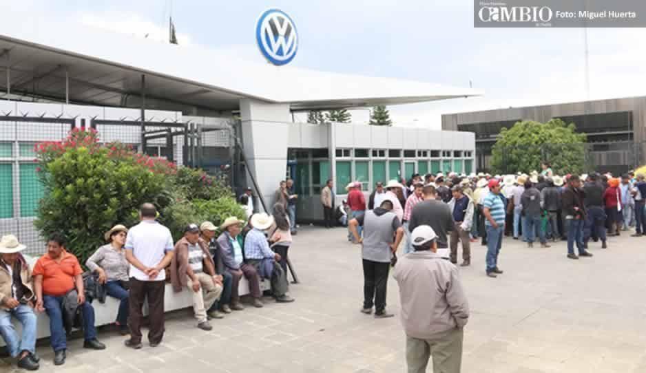 Campesinos piden 73 mdp de indemnización a la Volkswagen por la pérdida de sus cosechas (FOTOS)