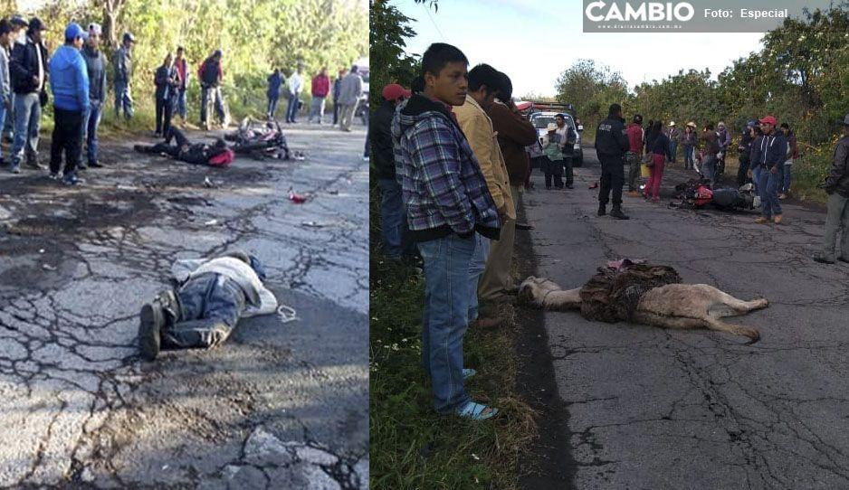 Borrachos e irresponsables, atropellan y matan a hombre de la tercera edad en Atlixco