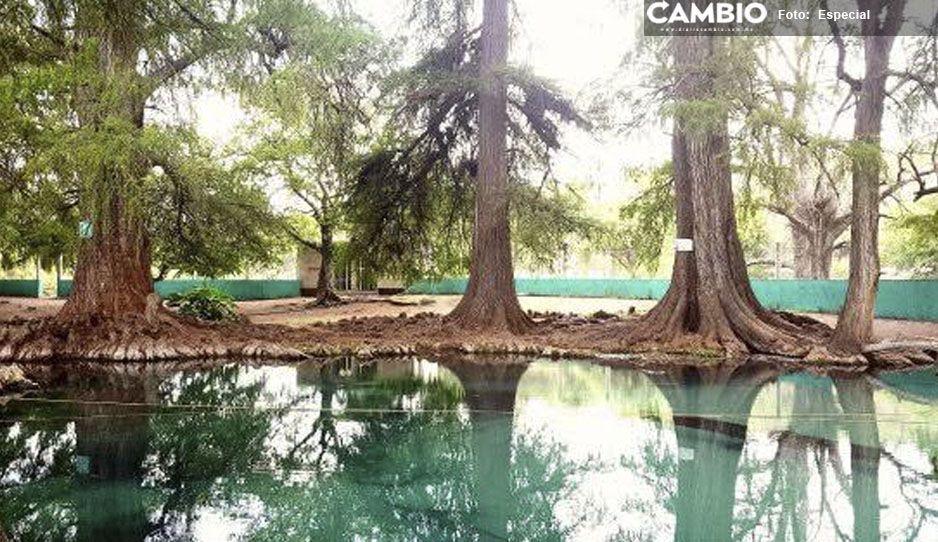 Muere ahogado en balneario de Tepeojuma