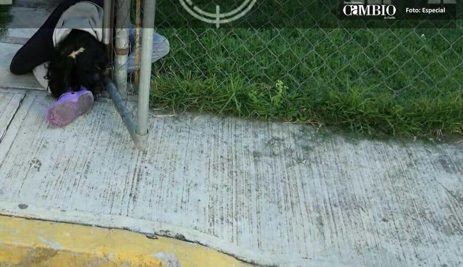 Miércoles de terror en Texmelucan y Huejotzingo: 3 ejecutados y 1 herido