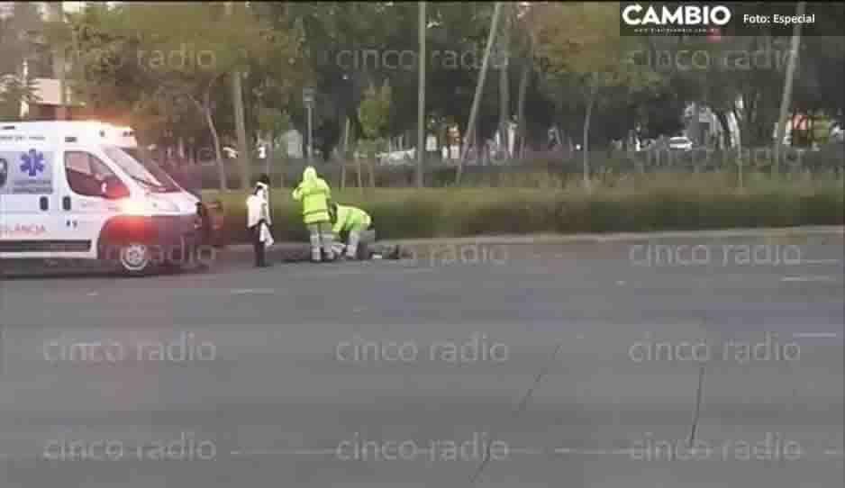 ¡No logró cruzar! Abuelito muere atropellado en la Vía Atlixcáyotl