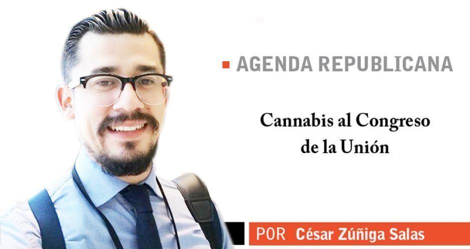 Cannabis al Congreso de la Unión