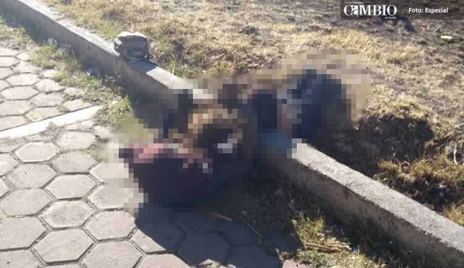 Maniatado y con un disparo en la cabeza, hallan el cuerpo de un hombre en Tlalancaleca