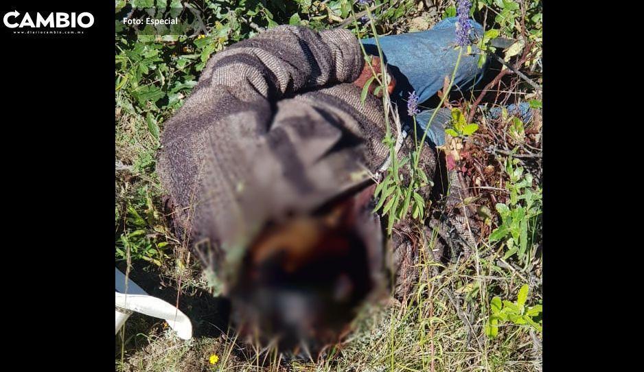 Talamontes actúan con impunidad  en Tochimilco y Tianguismanalco