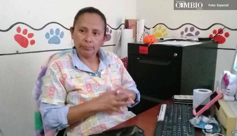 Sin sanciones por maltrato animal en Texmelucan a pesar de tener reglamento
