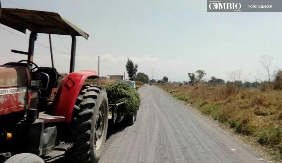 Dos campesinos caen de su carreta en Huejotzingo, uno muere y el otro está herido de gravedad