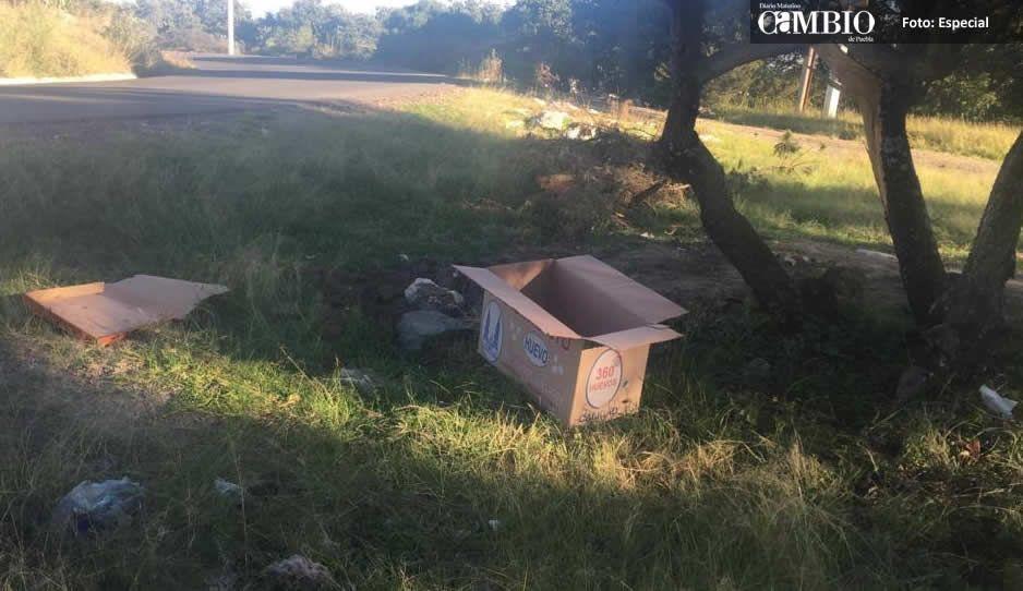 Abandonan a recién nacida en caja de cartón en Amozoc; es el segundo caso en menos de un mes