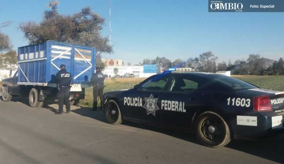 Policía Federal asegura unidad con combustible en Texmelucan