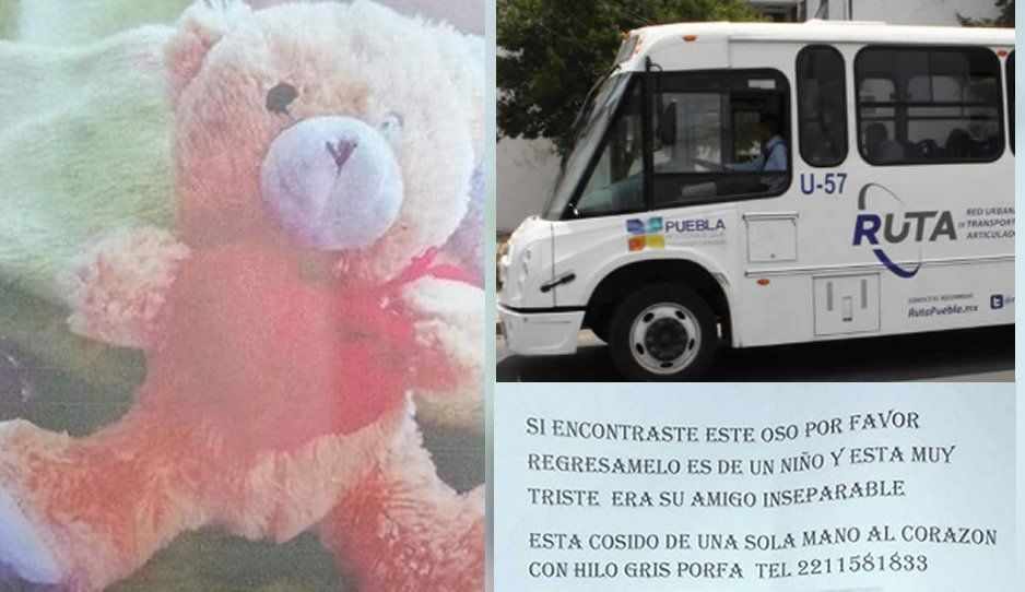 ¡Ayúdanos a buscar a Teddy! El pequeño Alan perdió a su osito en el RUTA y está muy triste