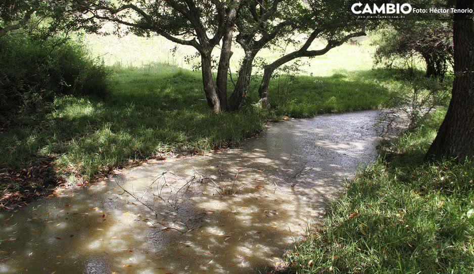 Sigue la contaminación de ríos en El Verde, ahora son queserías que operan sin plantas de tratamiento