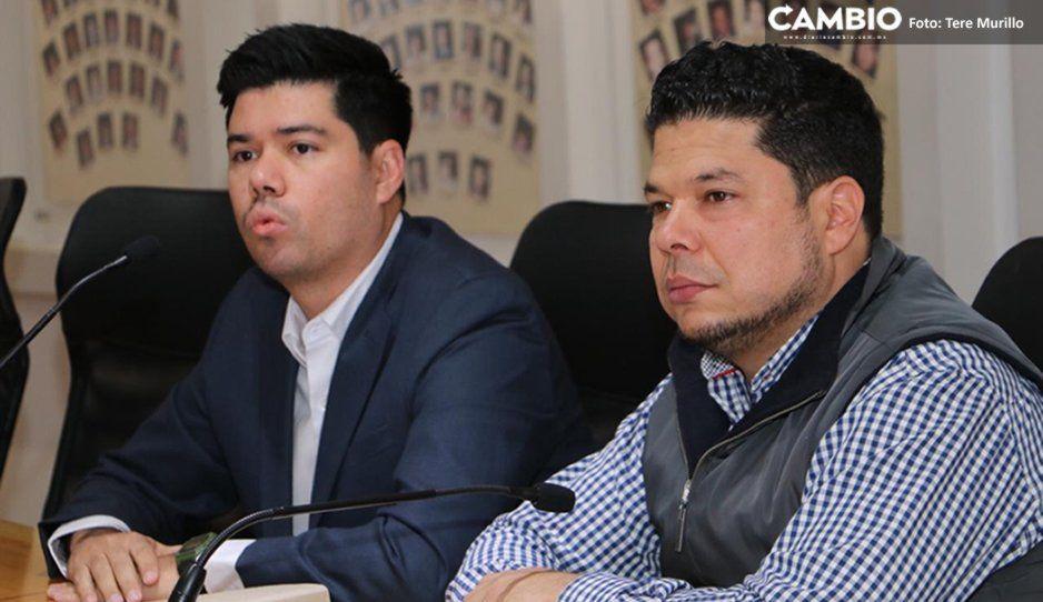 Multa de hasta más de un millón de pesos por mutilar animales con fines estéticos, proponen diputados (VIDEO)