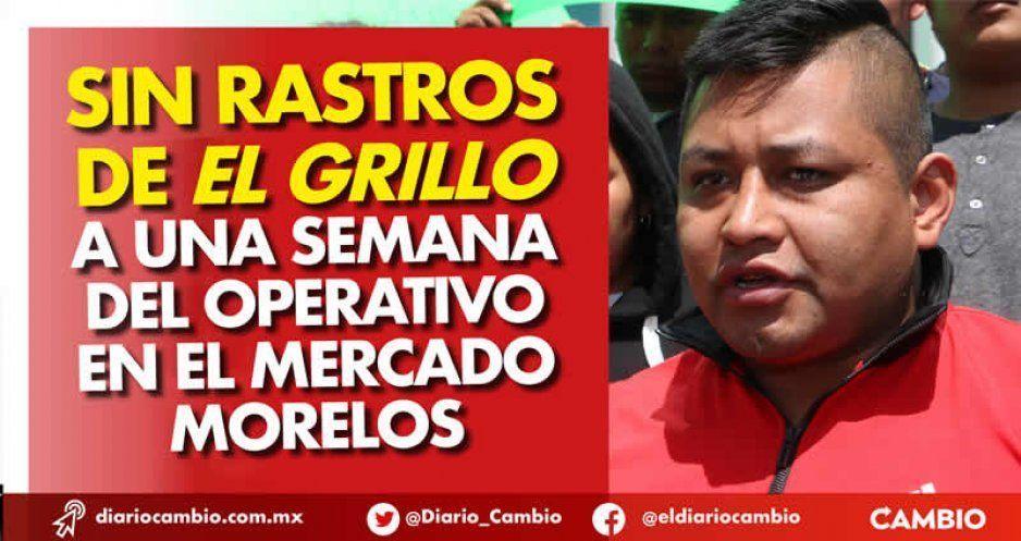 Sin rastros de El Grillo a una semana del operativo en el Mercado Morelos