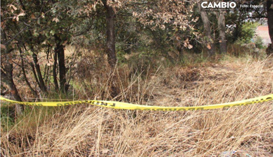 Niños hallan cadáver de un hombre que estaba siendo devorado por perros en una barranca de Libres