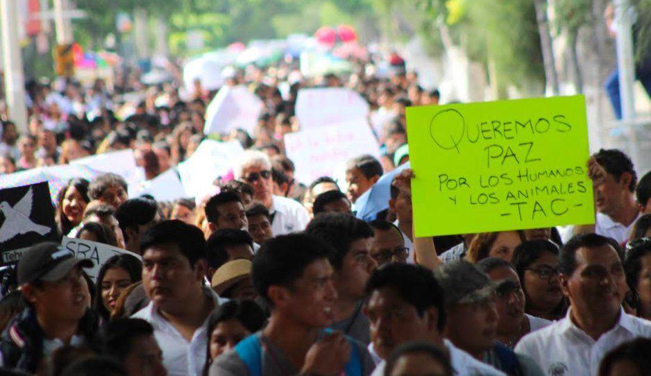 Corredor Universitario se coordina para atajar la ola de inseguridad en Tehuacán