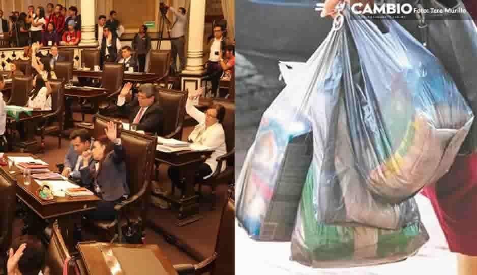 ¡Adiós a los popotes y bolsas de plástico! Congreso de Puebla aprueba ley para prohibir su uso