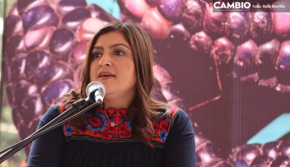 La capital será de los primeros municipios en usar pistolas eléctricas para inmovilizar a delincuentes: Claudia