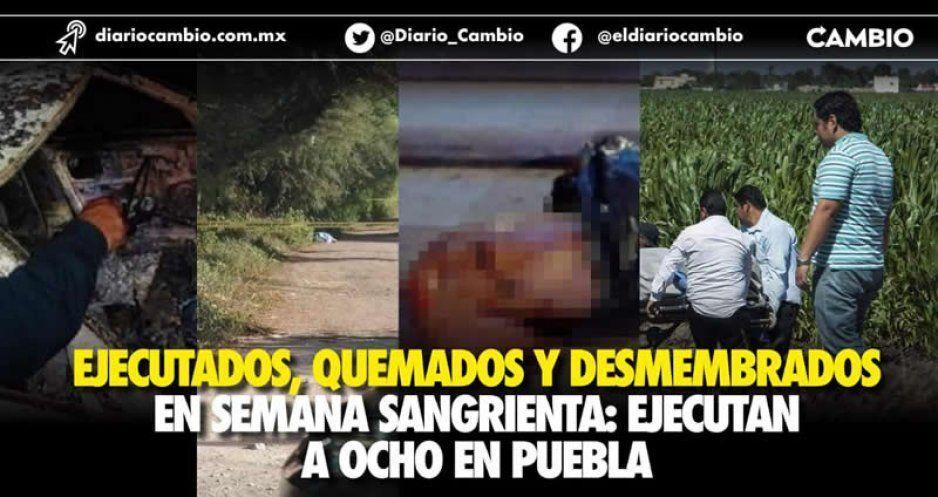 Ejecutados, quemados y desmembrados en  semana sangrienta: ejecutan a ocho en Puebla