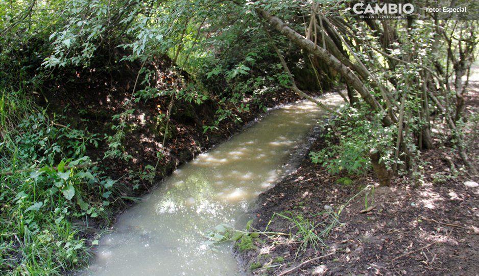 Queserías de San Salvador El Verde operan sin plantas de tratamiento