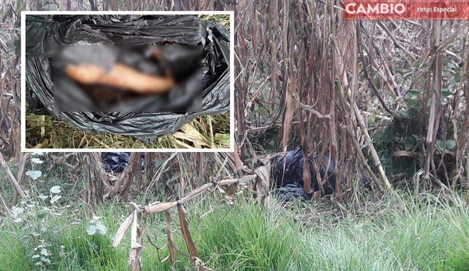 ¡Macabro hallazgo! Localizan restos humanos en límites de Huejotzingo y Nativitas Tlaxcala