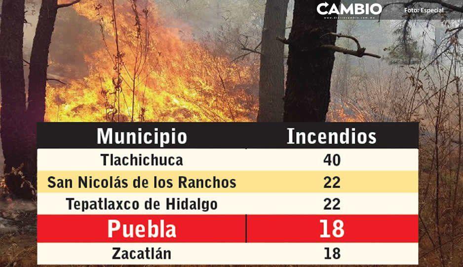 Van 307 incendios forestales en 2019, en la capital 18 y dos aún están activos