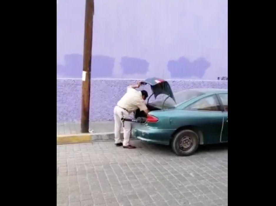 ¡Qué oso! Pretendía robar un scooter hasta que lo grabaron (VIDEO)