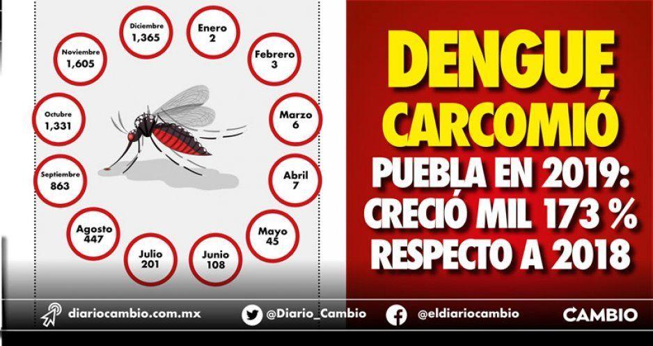 Dengue carcomió Puebla en 2019: creció mil 173 % respecto a 2018