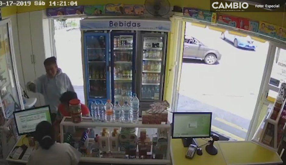 Estos son los delincuentes que asaltaron  dos farmacias en Tehuacán (VIDEO)