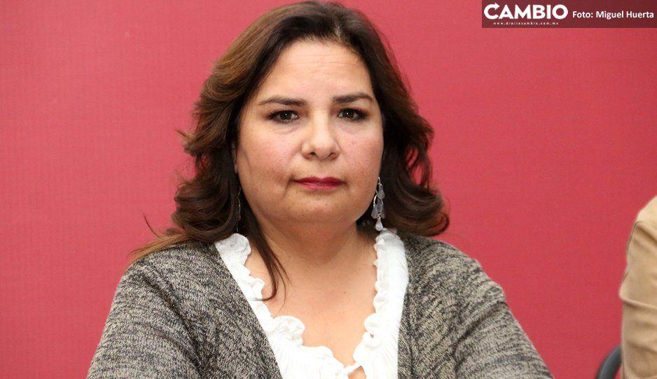 Ecocidio en el Ecológico pudo evitarse: Catrina tendrá que buscar nueva sede