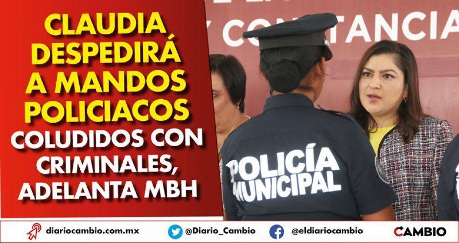 Claudia despedirá a mandos policiacos coludidos con criminales, adelanta MBH