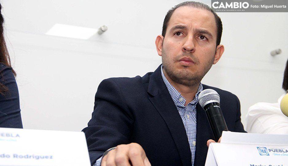 Marko Cortés sienta a Cárdenas con los morenovallistas