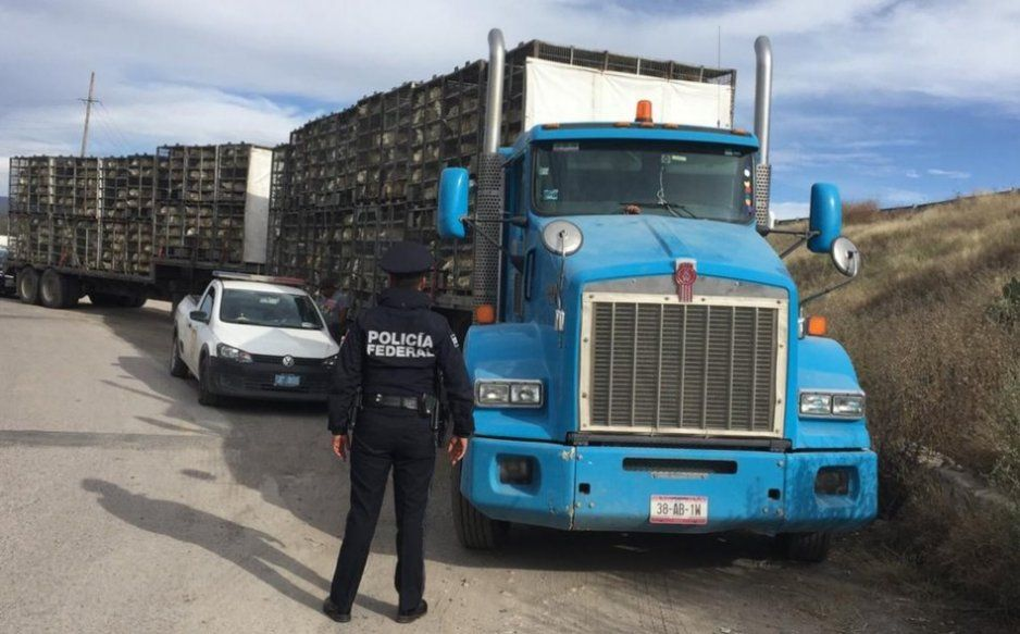 Se cancelan los repartos de mercancías en Moyotzingo por los atracos