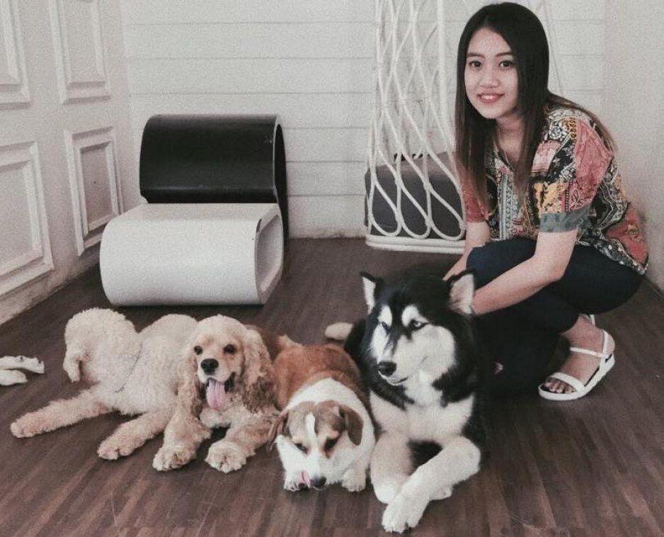 Sacrificarán perritos en China por coronavirus