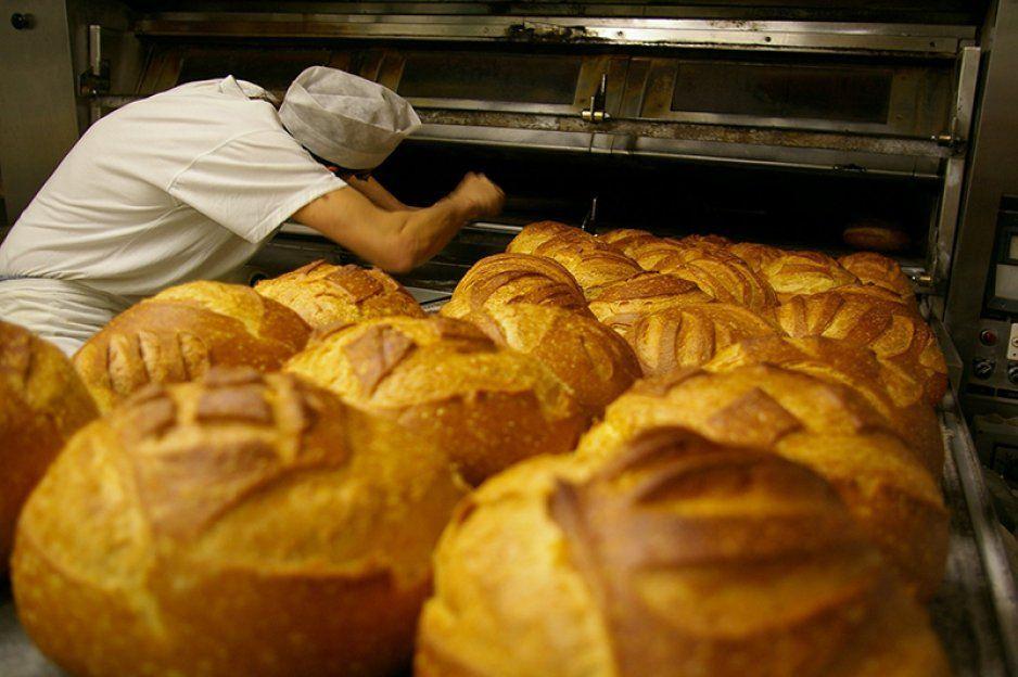 ¡Panaderos mexicanos a ganar dólares! Canadá les ofrece trabajo con un sueldazo