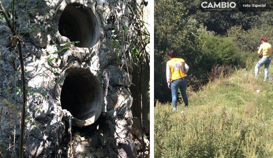 Ceaspue y PC de El Verde realizan muestreo del río Atoyac para medir contaminación