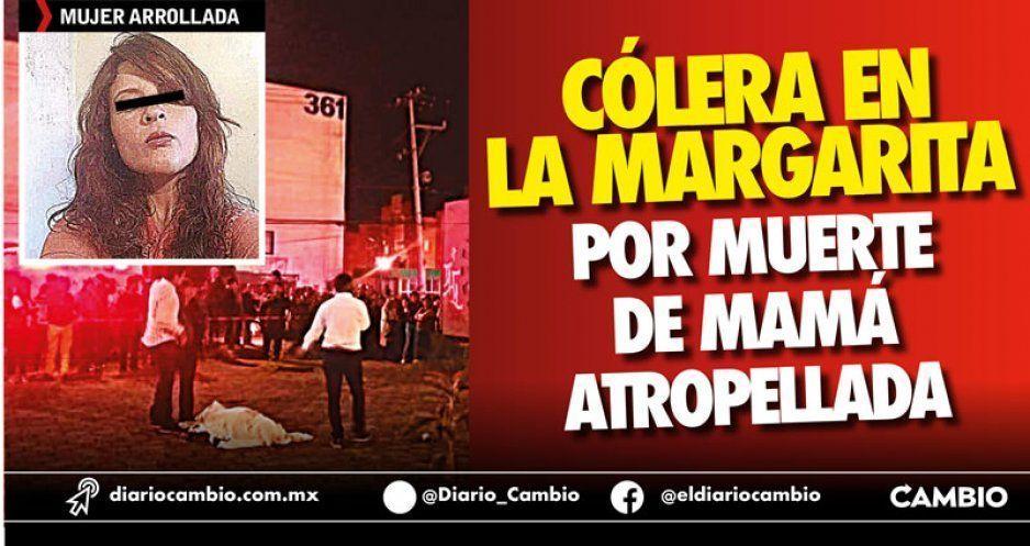 Cólera en La Margarita por muerte de mamá atropellada (VIDEO)