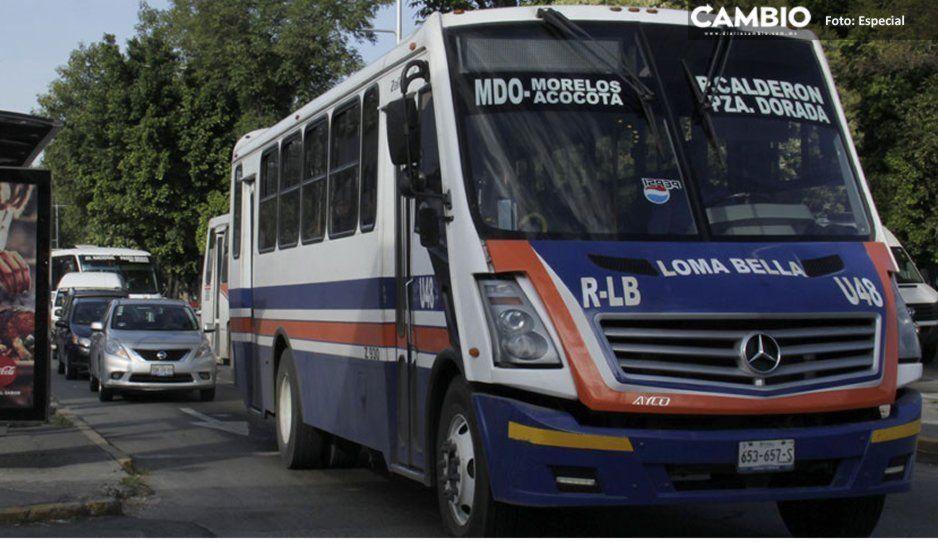 Usuarios esperan más de una hora para abordar ruta Loma Bella en Bosques de Manzanilla