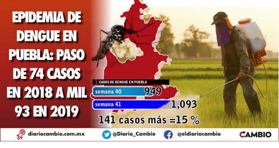Dengue sin control en Puebla: crecen   1,380 % los casos del virus en un año