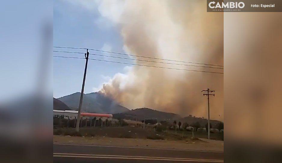 Controlan en más del 50 por ciento incendio forestal en Libres