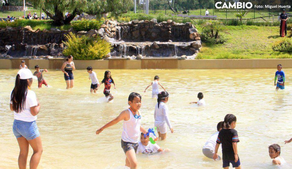 ¡Qué codos! Quieren transformar Playa Amalucan en fuente para ahorrar dinero