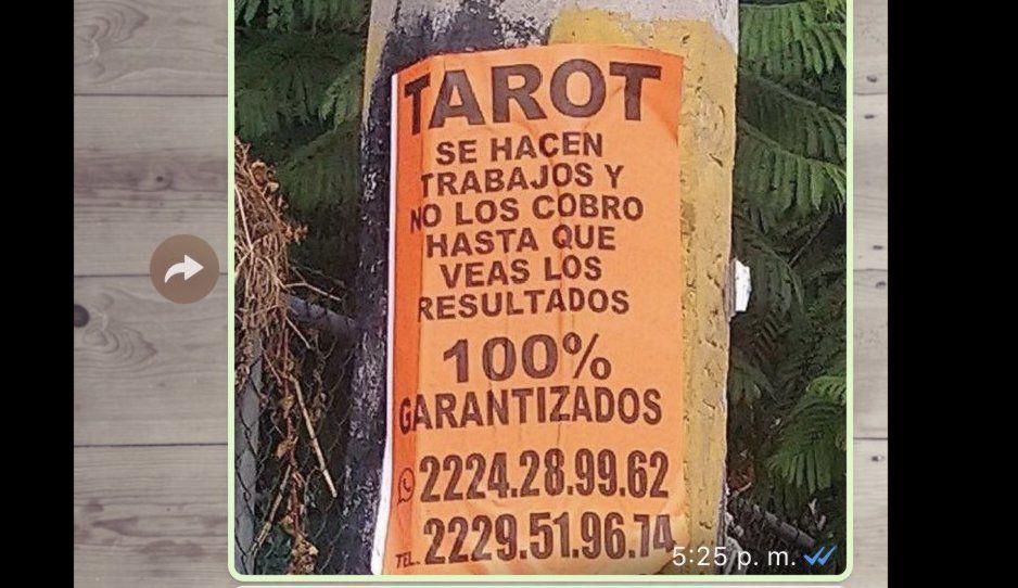 Gandalla del tarot tapiza Puebla con su publicidad, un ciudadano le reclama y el adivinador se pone lépero
